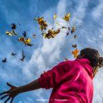 KDD Castillo de Soutomailor: Aprovechando el otoño