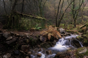 Ruta do rio san martiño